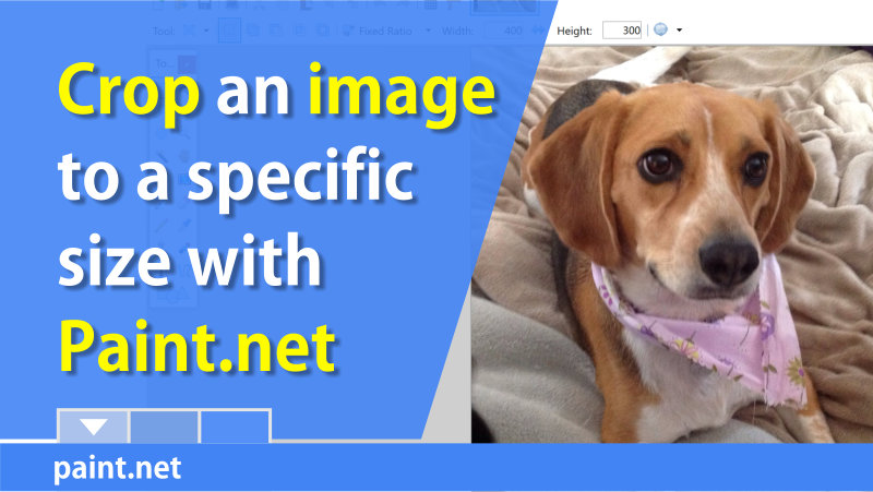 Crop a picture to a specific size with Paint.Net
