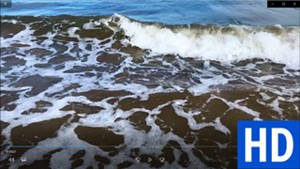 "<a href=""/go/zoom-video-015-seashore-foam"" target=""_blank"">Download</a>"