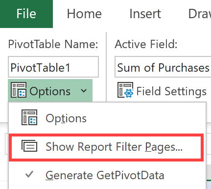 Report Filters in Excel
